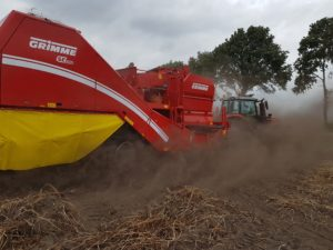 grimme 260 stof